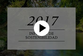 2017 |Informe de Sostenibilidad